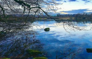 Balgavies Loch, Forfar