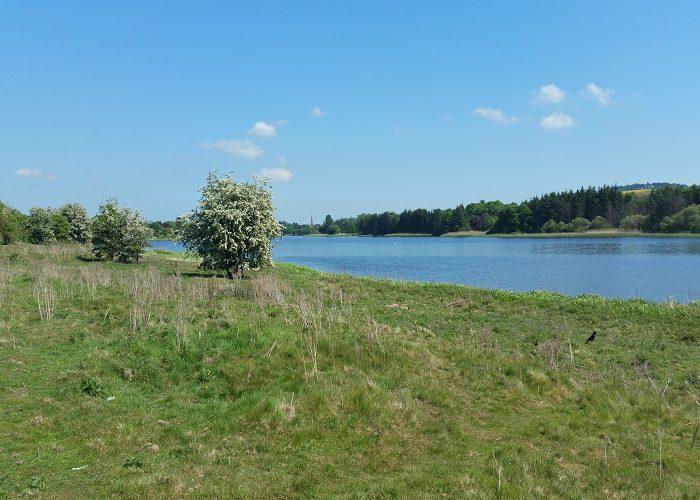 Forfar Loch