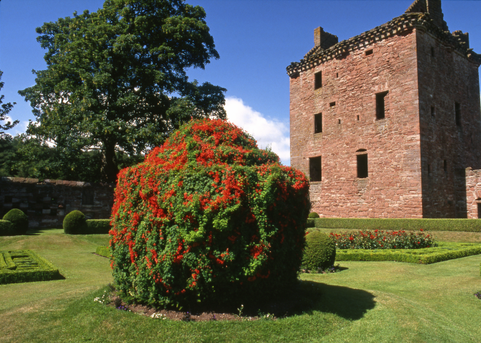 Edzell Castle and Gardens