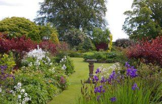 Pitmuies Garden, Guthrie, near Forfar
