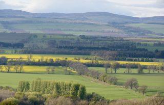 Vale of Strathmore, Angus, Scotland