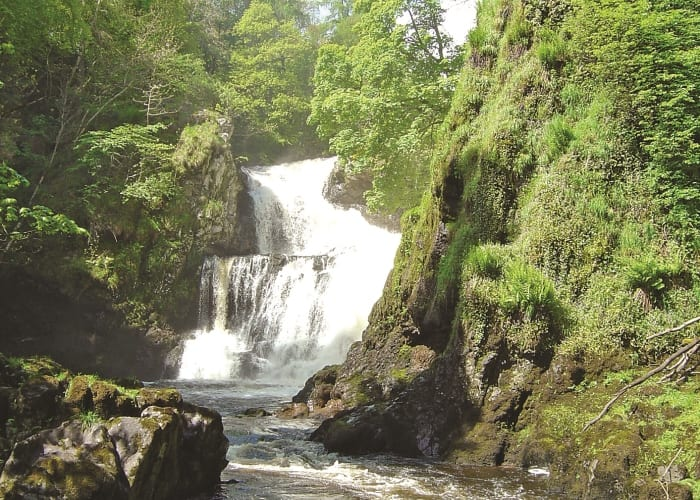 Reekie Linn waterfall, Glen Isla