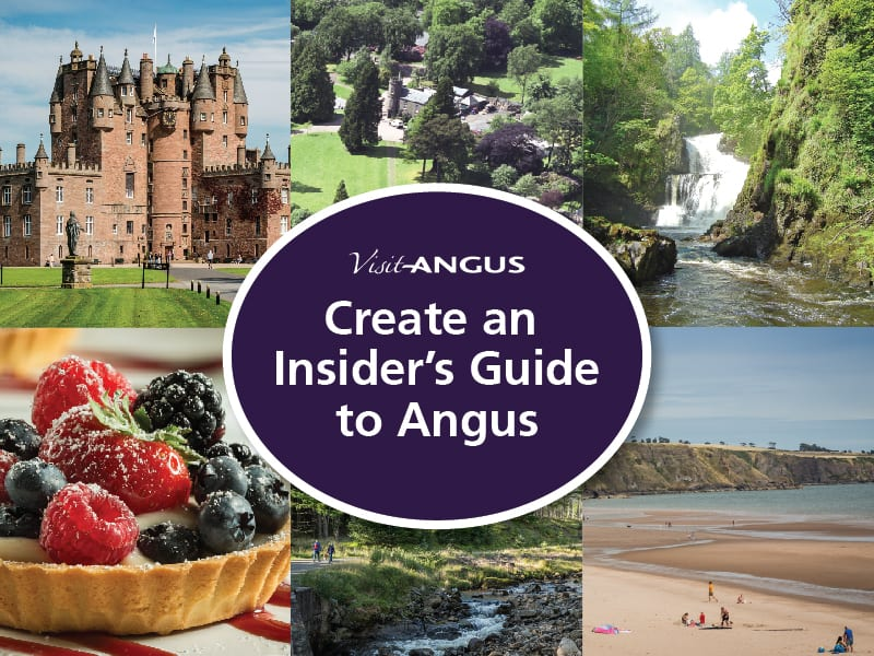 Insiders guide to Angus