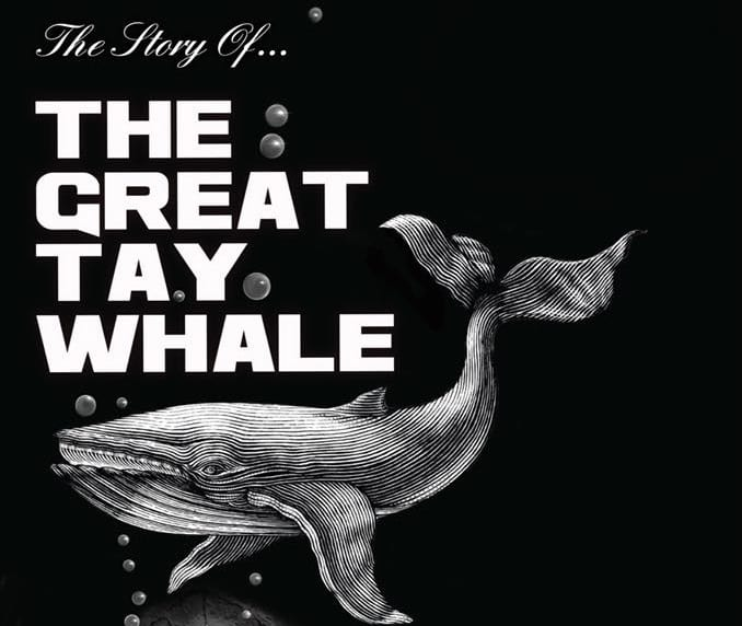 The Great Tay Whale
