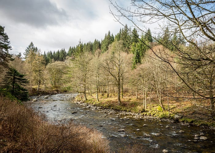 Walking Route 2 - Cortachy River Walk