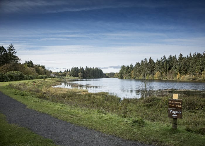 Crombie Country Park